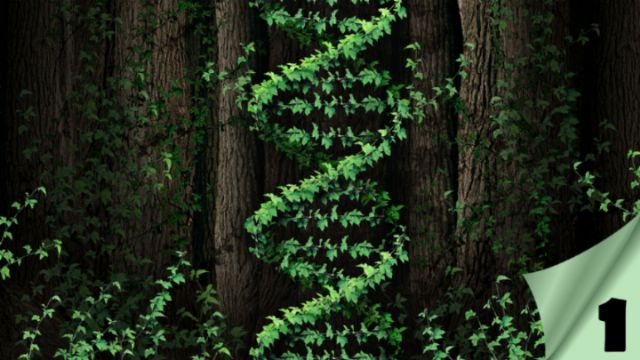 The Gene of Life, Part I – The Unknown Prophecy