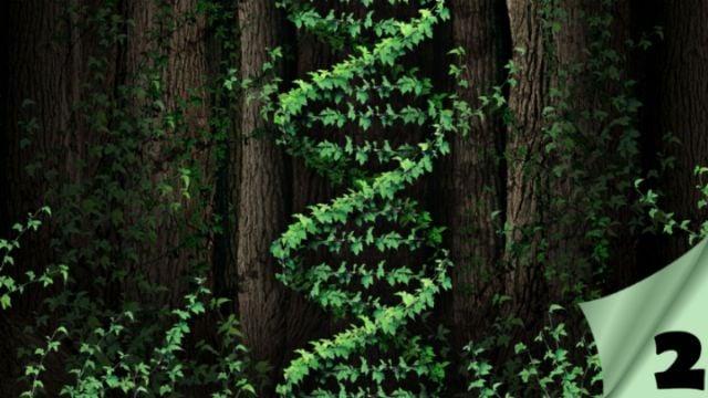 El gen de la vida, Parte II – La genética del juicio