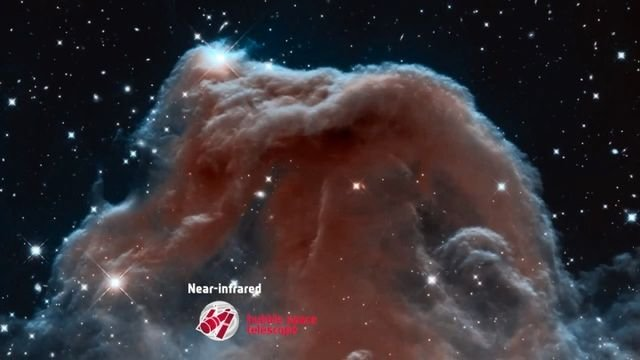 ESA, The Horsehead Nebula in New Light